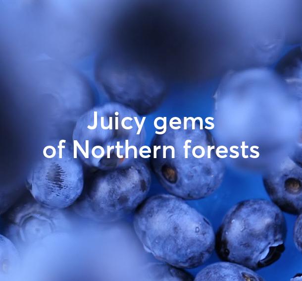 Berries - MOSSA COSMETICS